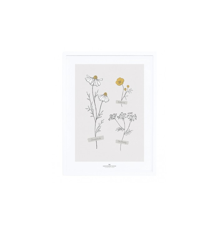 Lilipinso Poster & Frame - Wild Flowers