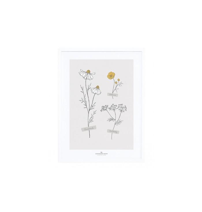 Poster con cornice Lilipinso - Fiori di campo