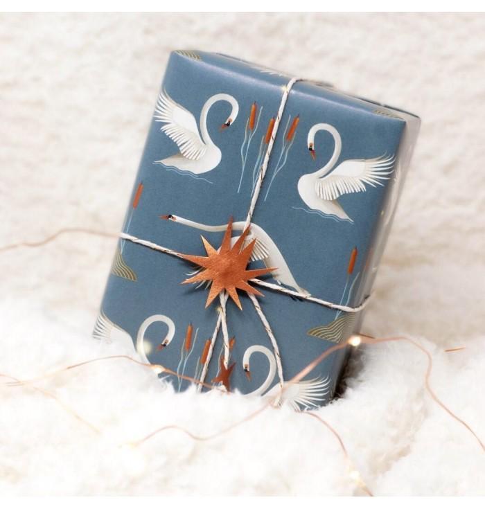 carta da regalo - lago dei cigni