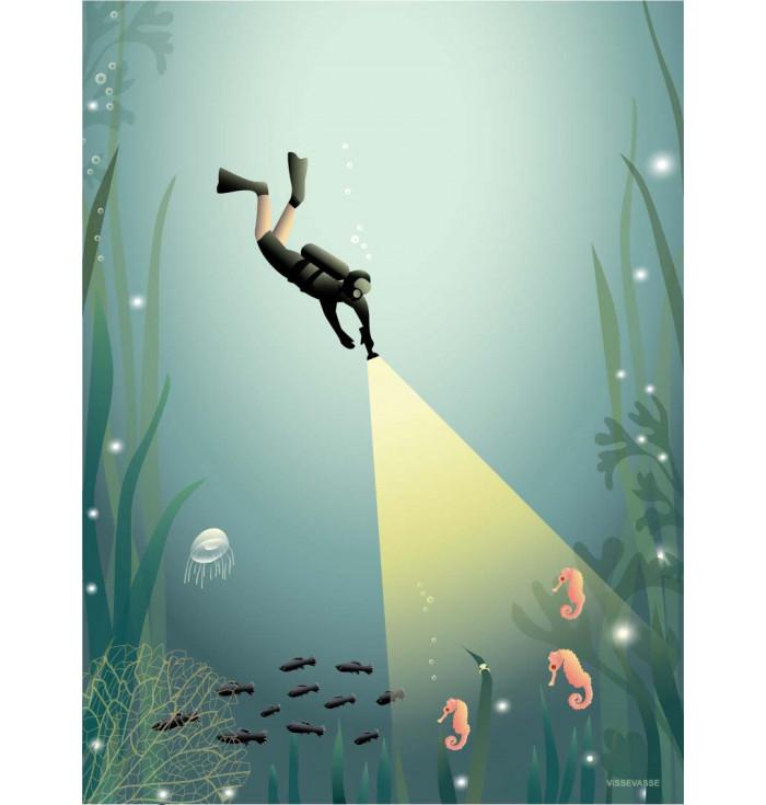 Poster 30x40 - The Diver - Vissevasse