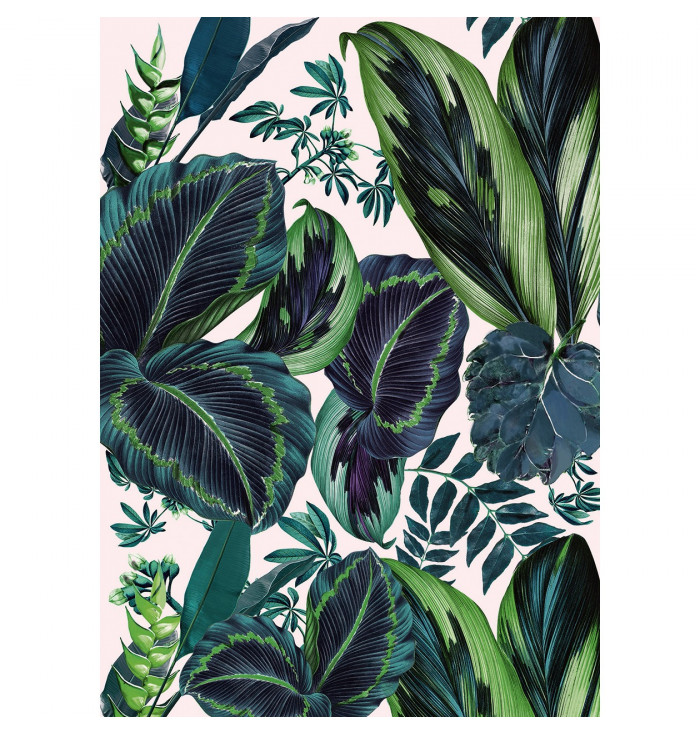 Wallpaper Jungle - The Pink Jungle - Caselio