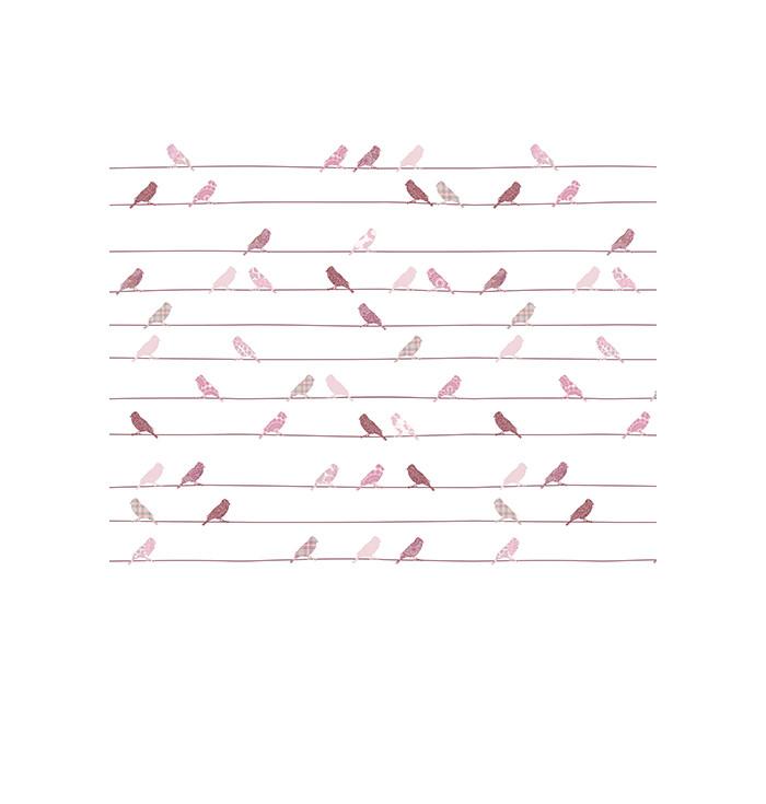 Carta Da Parati inke - Uccellini Sui fili