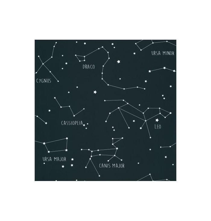 Carta da parati Our Planet - Constellations - Caselio