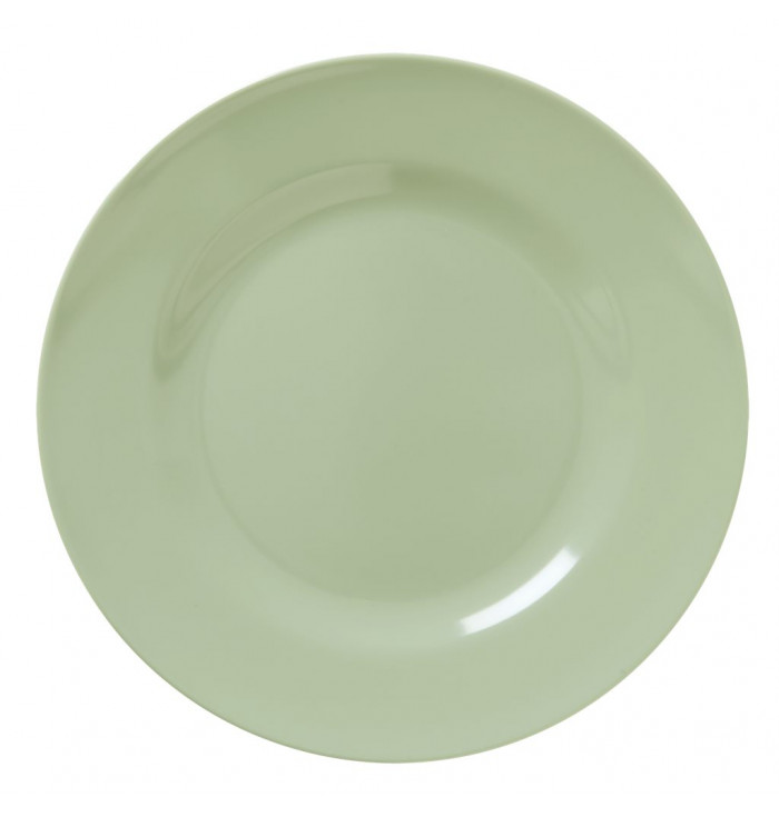Rice DK  Colorful Melamine Plate