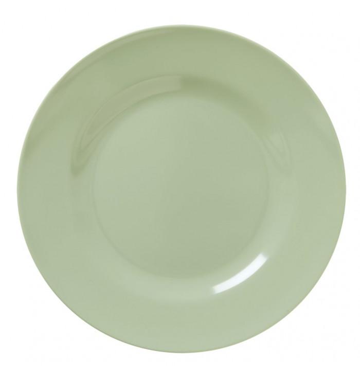 Rice DK  Colorful Melamine Plate