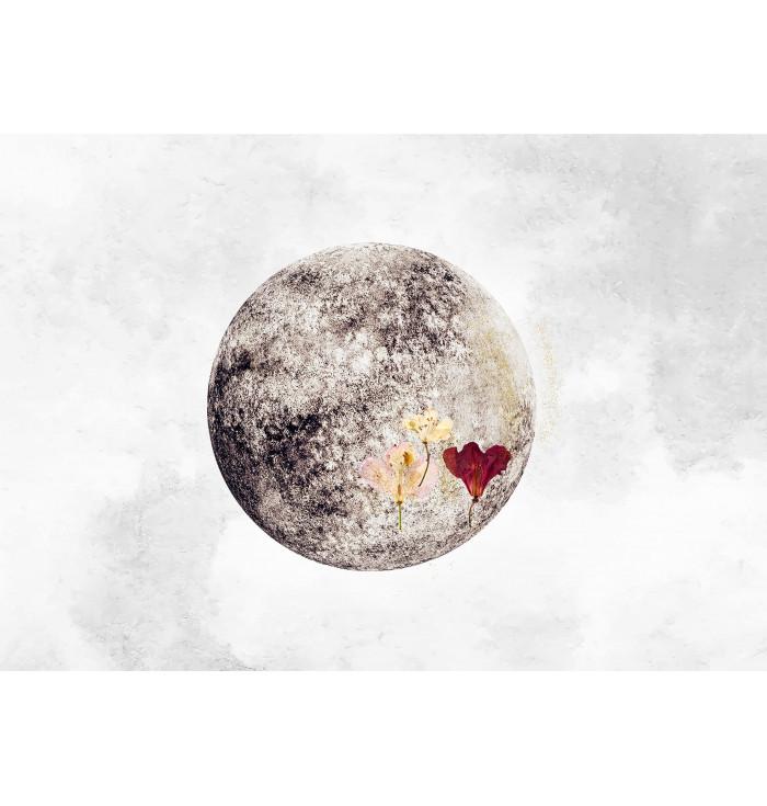Wallpaper panel Full Moon - Cordonné