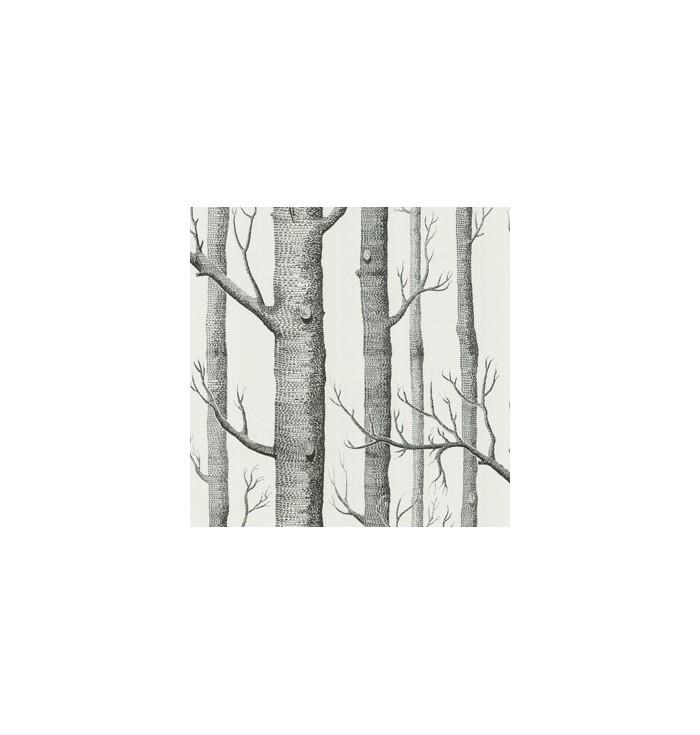 Wallpaper - Woods