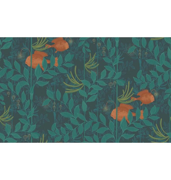 Wallpaper - Nautilus