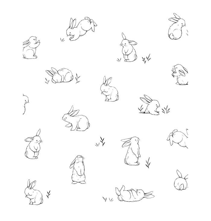 Wallpaper Bunnies Sketches