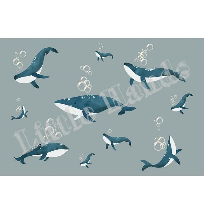 Wallpaper - Whale
