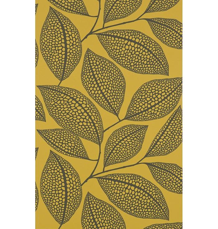 Collezione 1 - Pebble Leaf - Miss Print