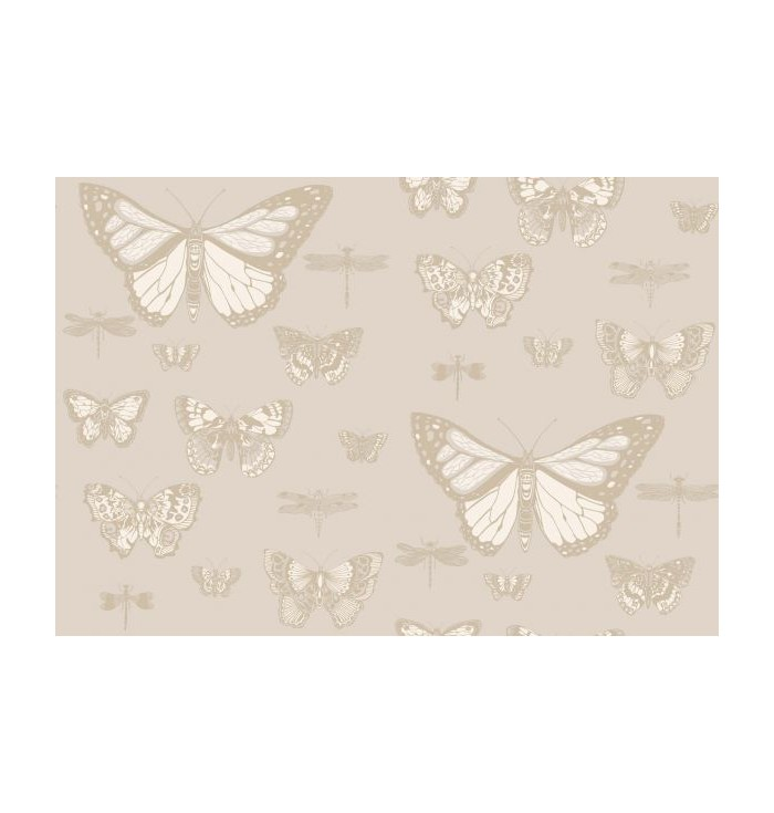 Wallpaper Whimsical - Butterflies and Dragonflies - Cole&Son